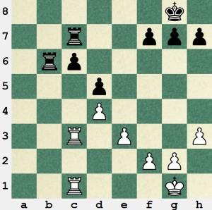 gray image 2