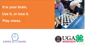 Chess Use it or Lose it