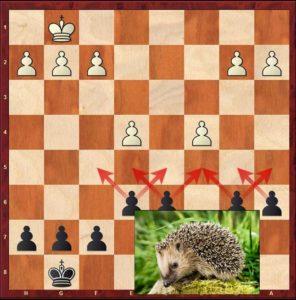 hedgehog_pawn_control